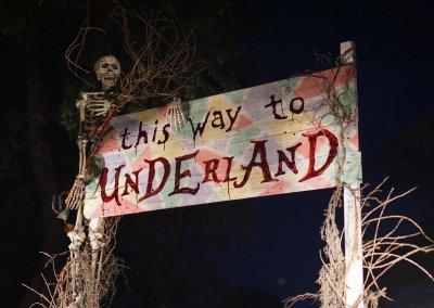 skeleton-night-sign-underland