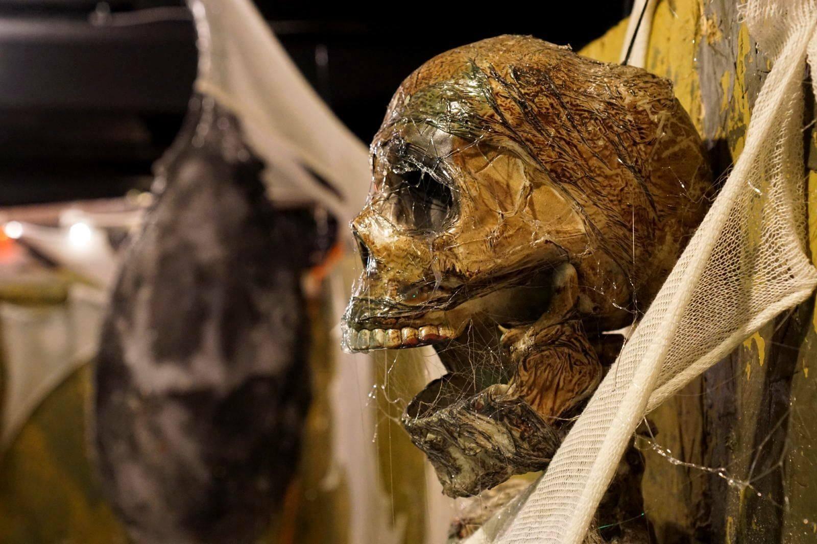 skull-dead-webs-mummy-heartstoppers